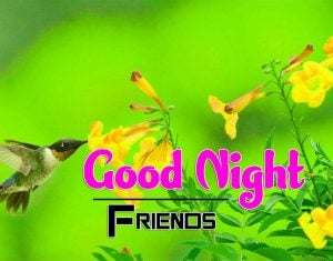 Top Good Night For Friends Download