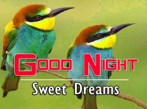 Top Good Night For Friends Free