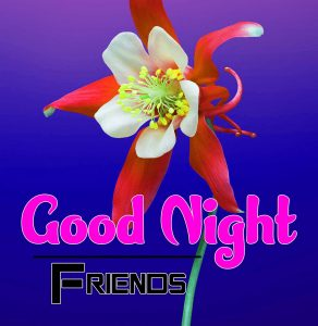 Top Good Night For Friends Pics