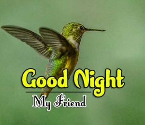 Top Good Night For Friends Pics Hd