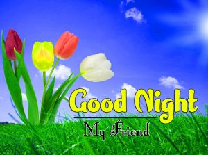 Top Good Night For Friends Wallpaper Free Download