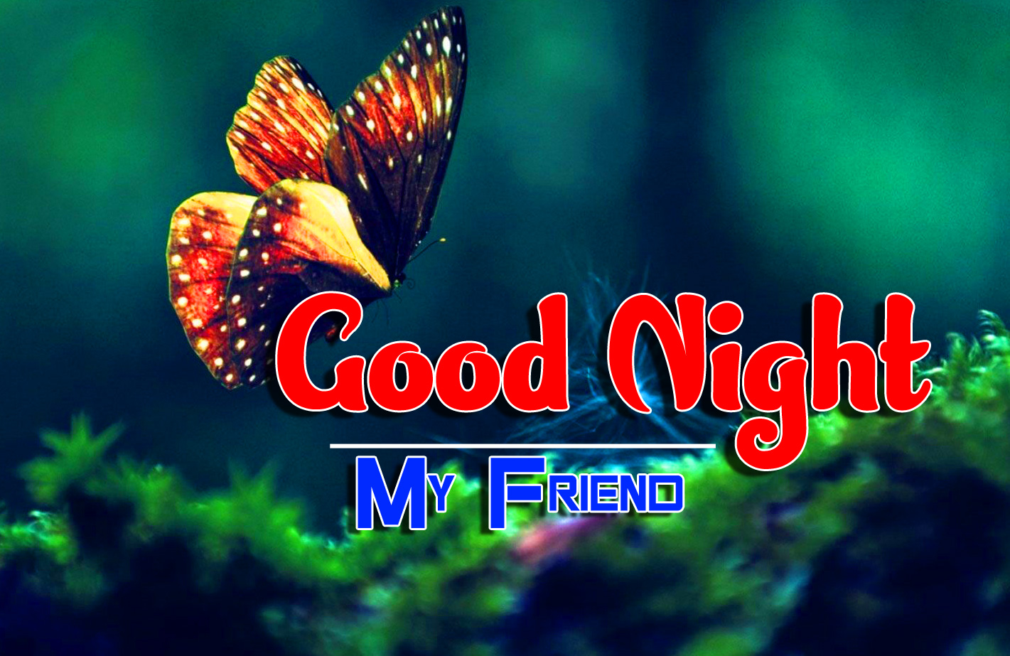 Top Good Night Images wallpaper photo download