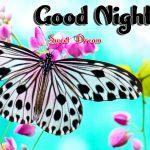 Whatsapp Good Night Images wallpaper free hd