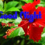 Whatsapp Good Night Images photo pics free hd
