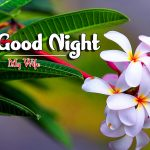 Whatsapp Good Night Images photo for hd