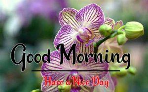 best Good Morning Images wallpaper pics hd