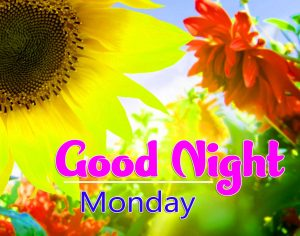 good night monday images Photo Pics Download