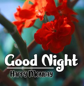 good night monday images Pics Free New