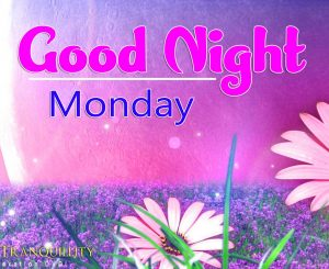 good night monday images Pics New Download Free