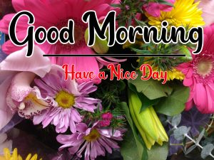 nice Good Morning Images photo download free hd