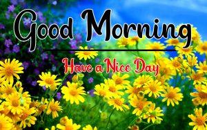 nice Good Morning Images pics hd