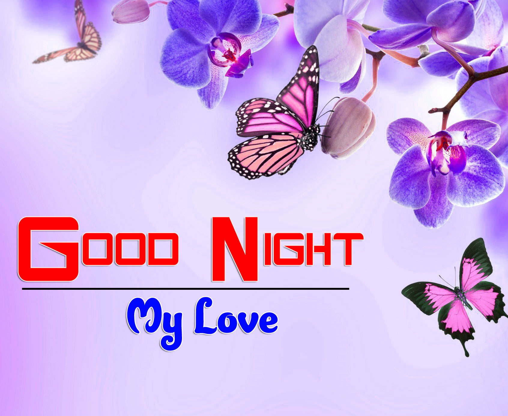 Best Quality Girlfriend Good Night Wishes Wallpaper Free Download