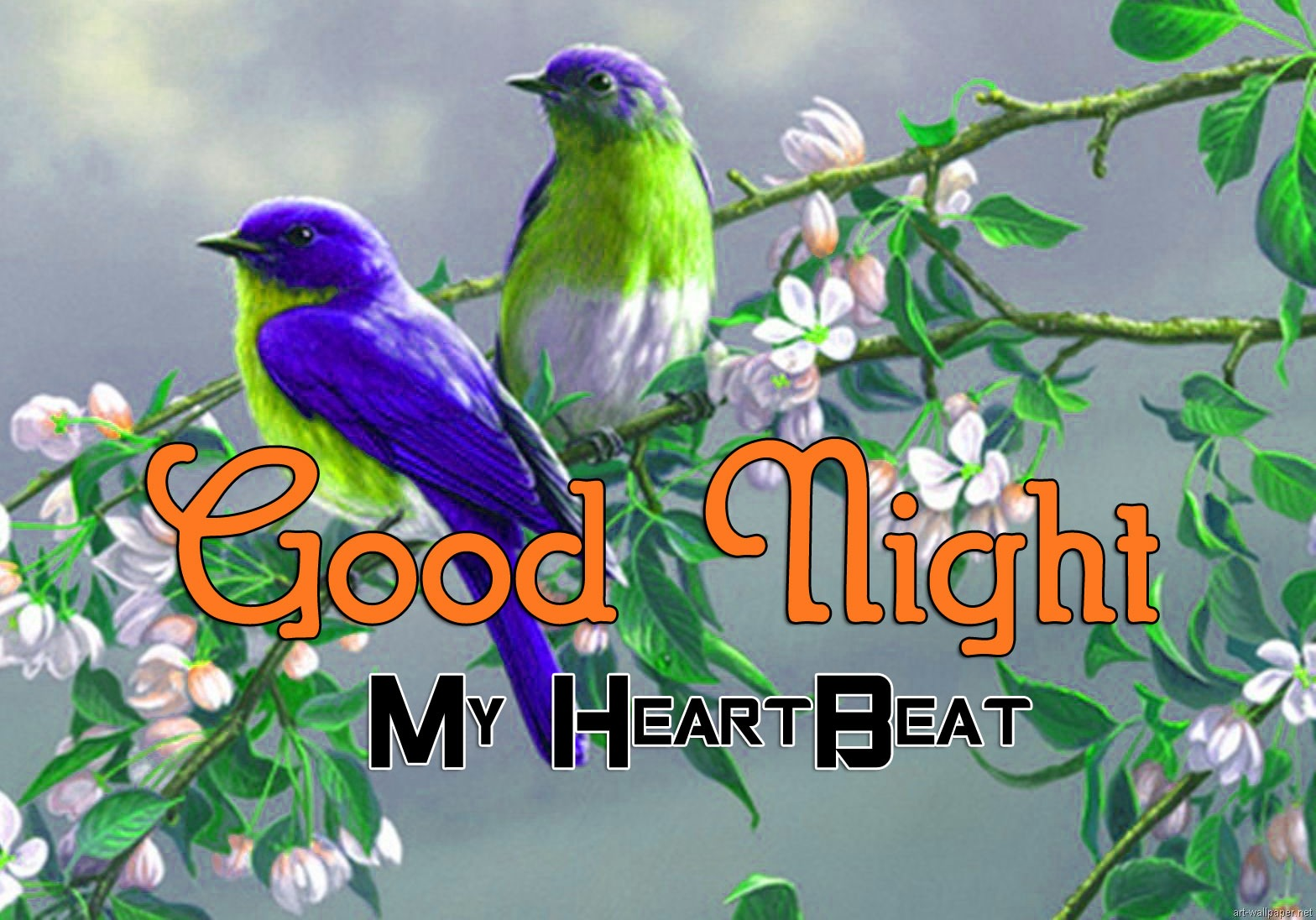 Bird Girlfriend Good Night Wishes Images
