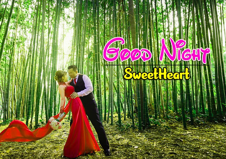 Free Girlfriend Good Night Wishes Pics Pictures Download