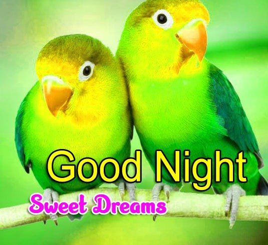 Free Girlfriend Good Night Wishes Wallpaper Download