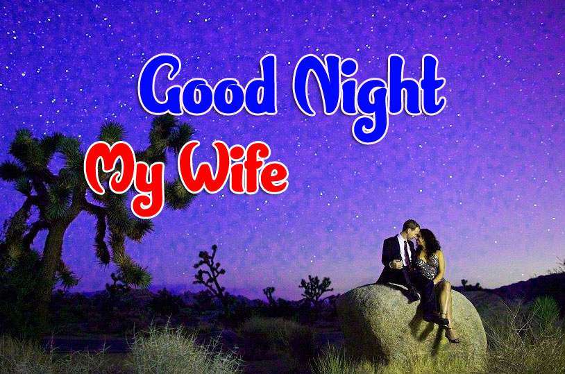 Free Girlfriend Good Night Wishes Wallpaper Free