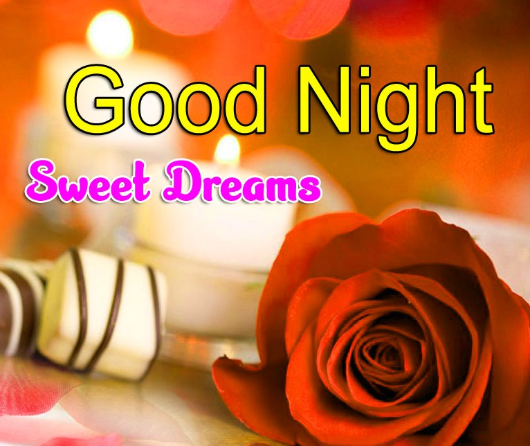 Free Red Rose Girlfriend Good Night Wishes Image Download