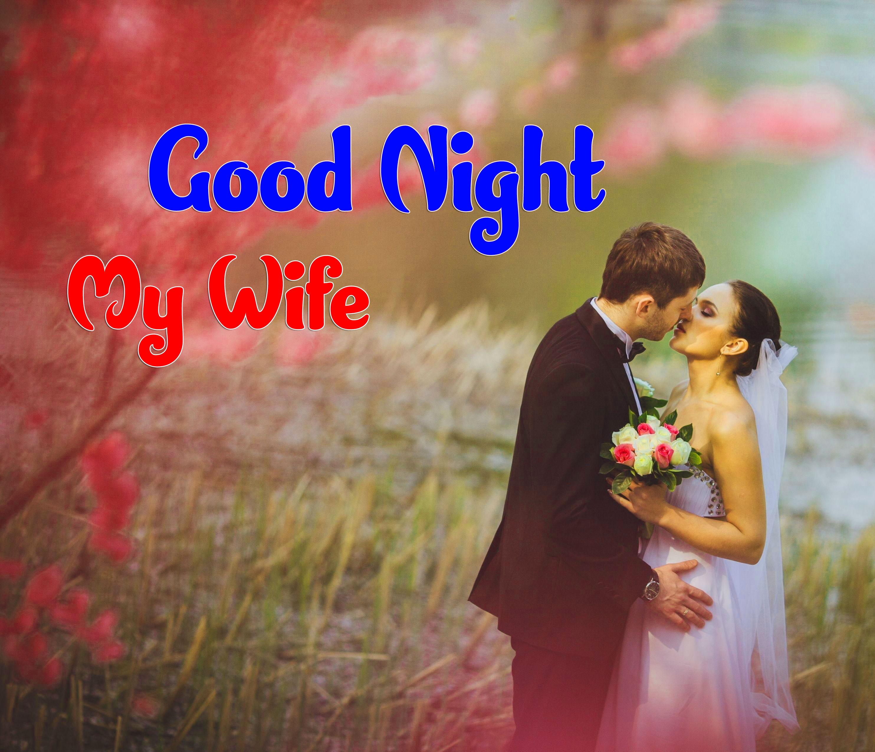 Girlfriend Good Night Wishes