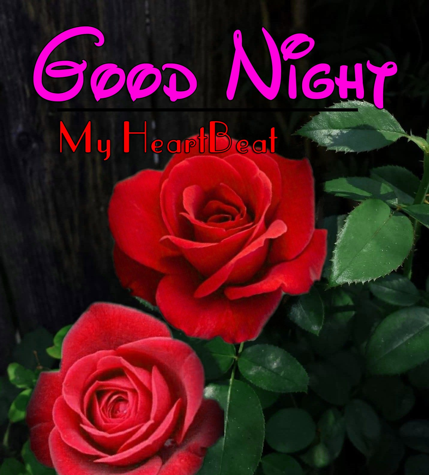 Beautiful Good Night Images Download