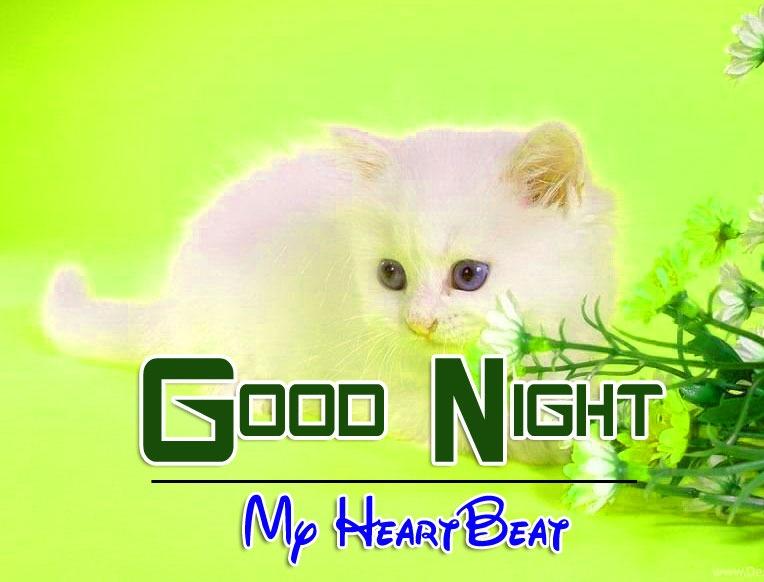 Beautiful Good Night Photo Hd Free