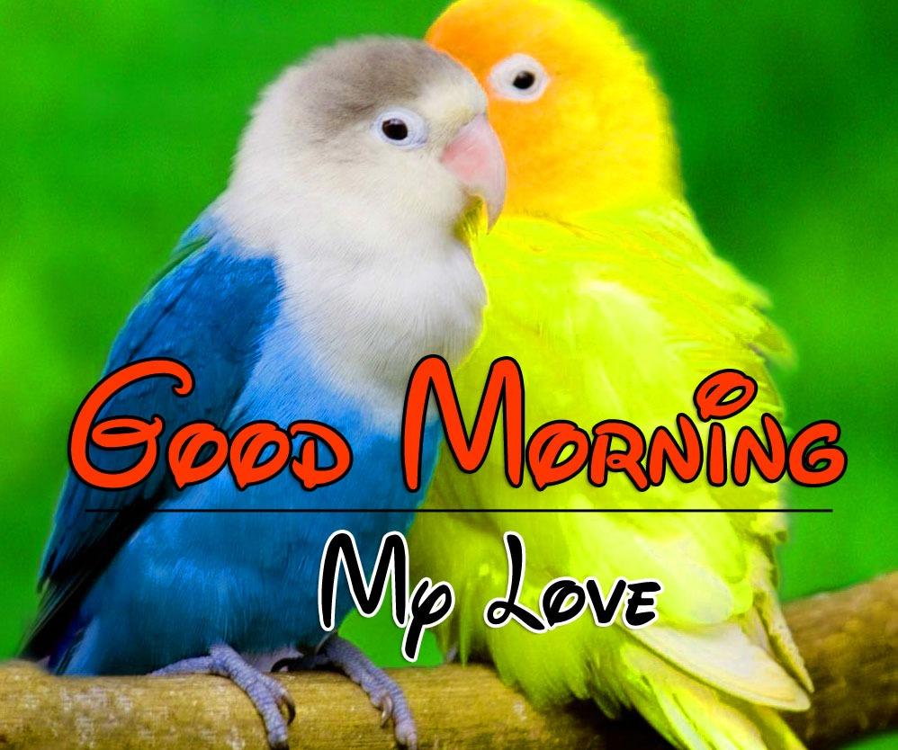 Beautiful Romantic Good Morning Images Wallapper