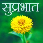 Best Full HD Suprabhat Wishes Images