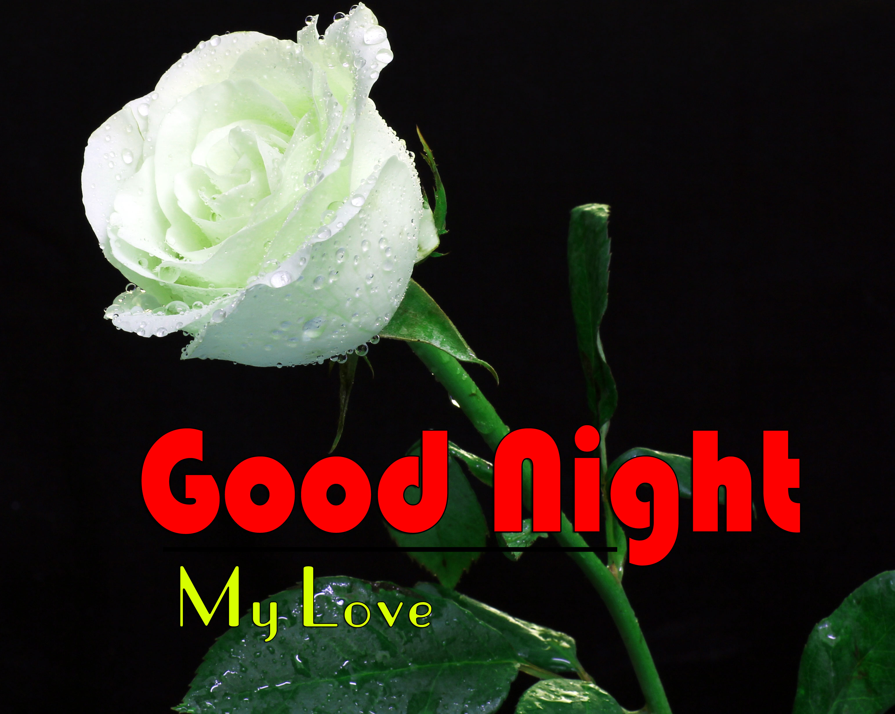Best Good Night Images Download