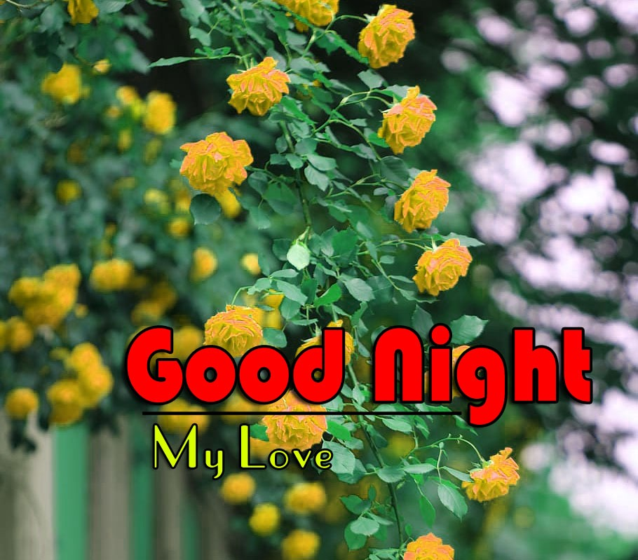 Best Good Night Images Pictures