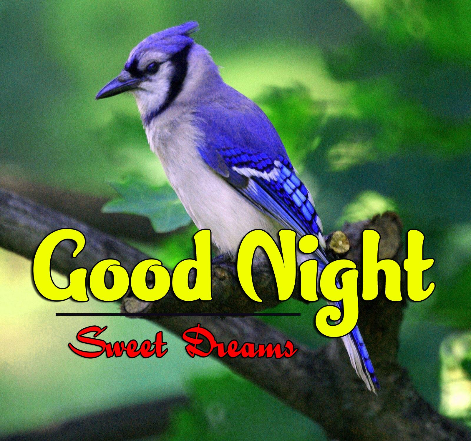 Best Good Night Images Wallpaper