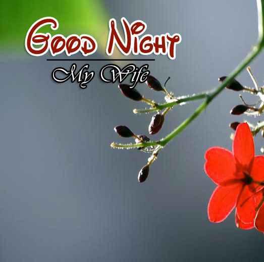 Best Good Night Pictures Images