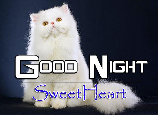 Free Good Night Download Images