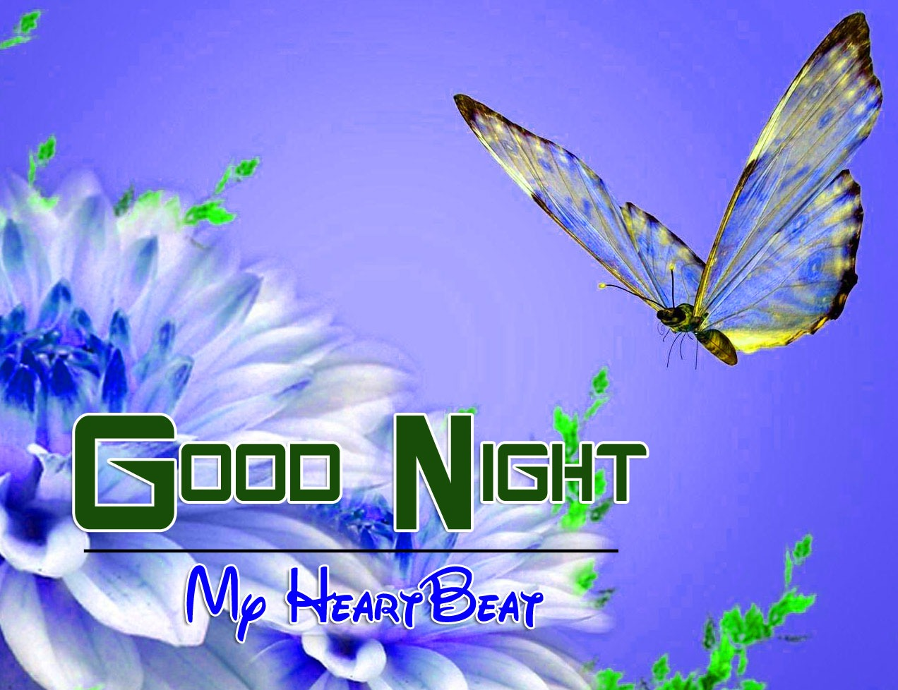 Free Good Night Images