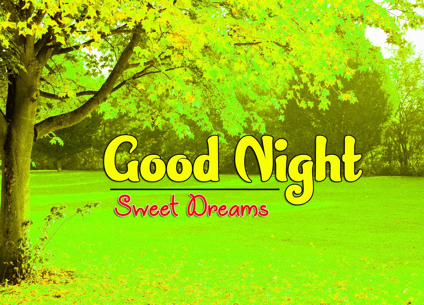 Free Good Night Images Wallpapeer