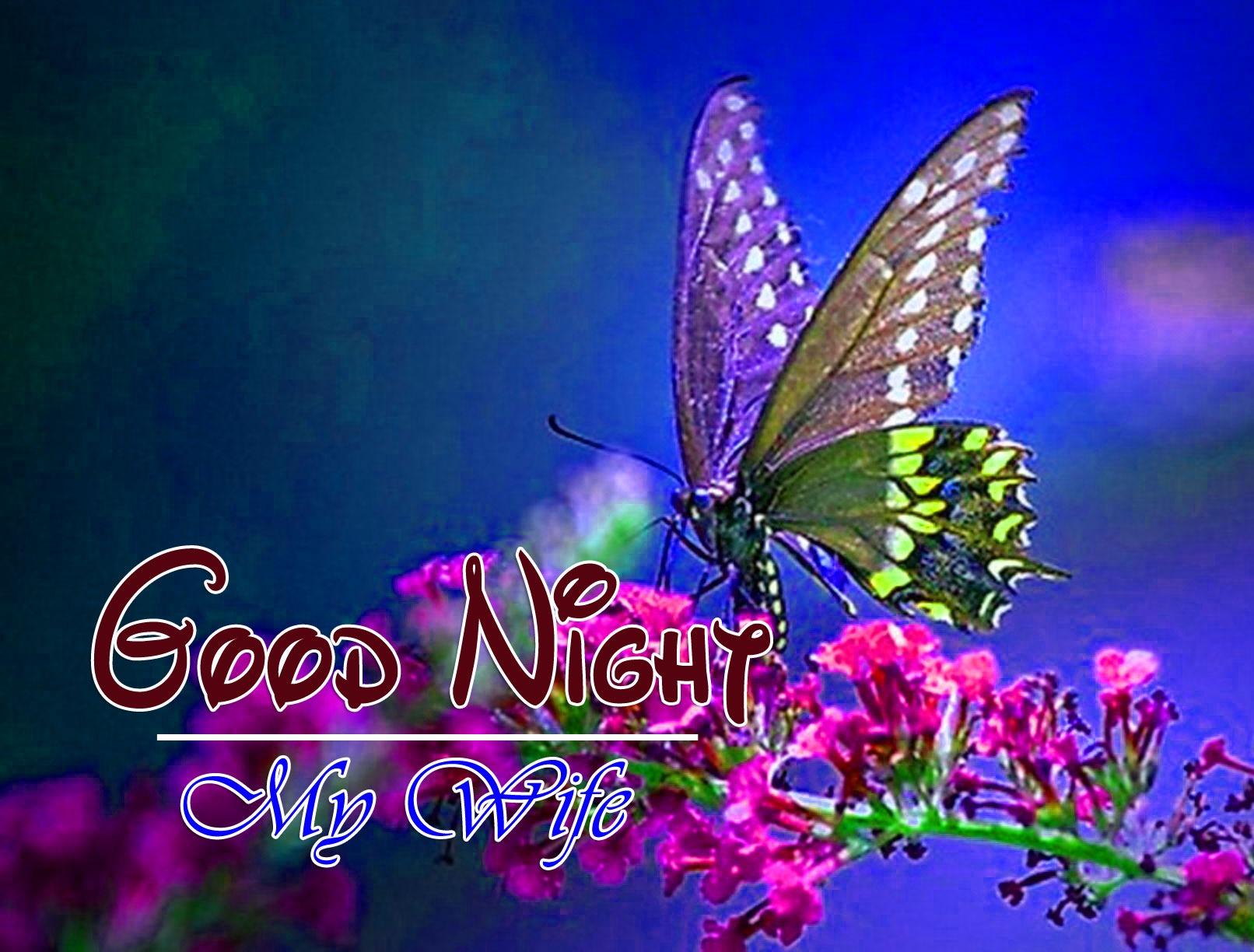 Free Good Night Images Wallpaper