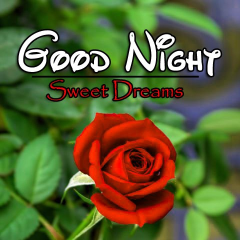 Free Good Night Pics Images