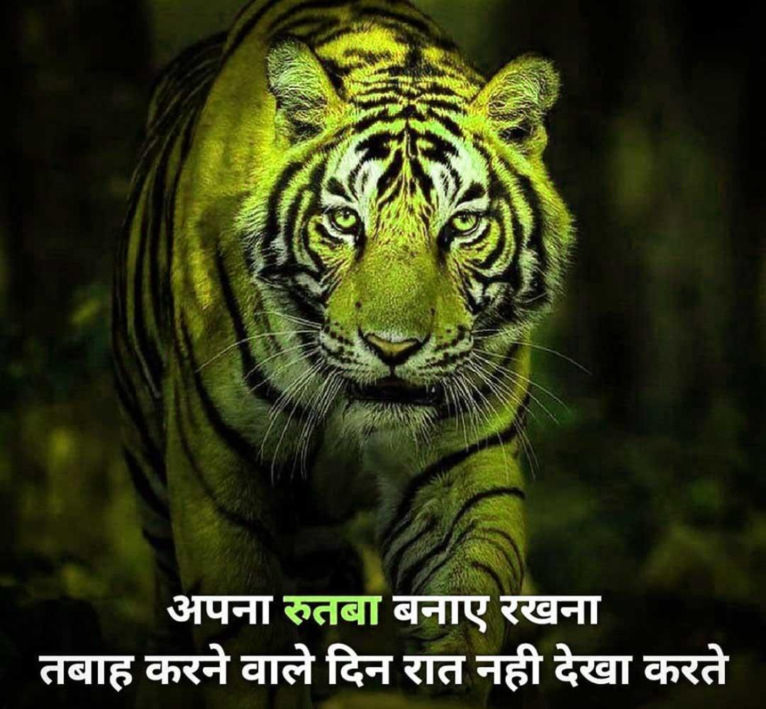 Free Hindi Attitude Images Wallpaper Pics
