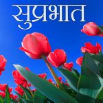 Free Suprabhat Wishes Wallpaper Download