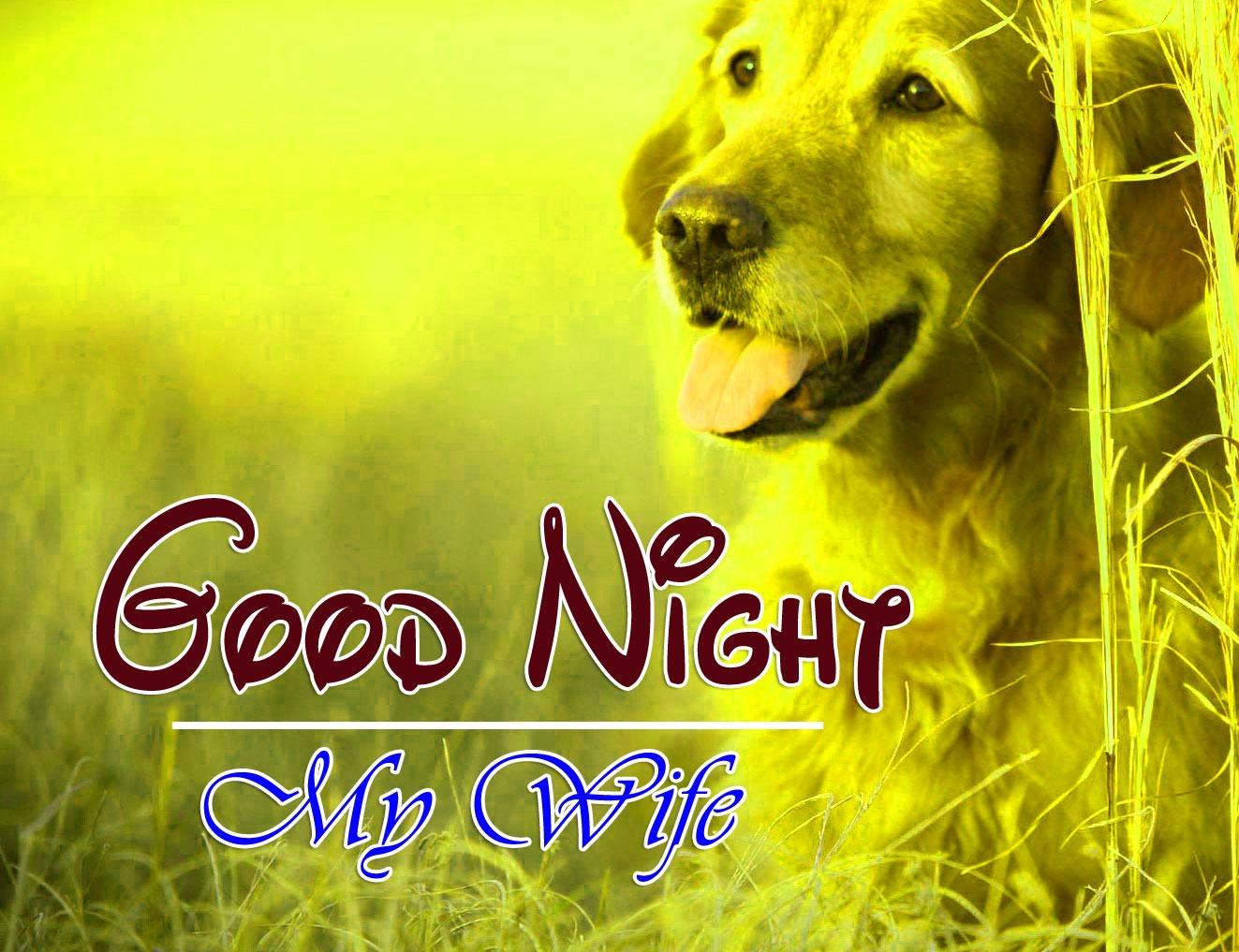 Good Night Download Photo
