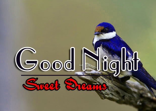 Good Night Images For Friend