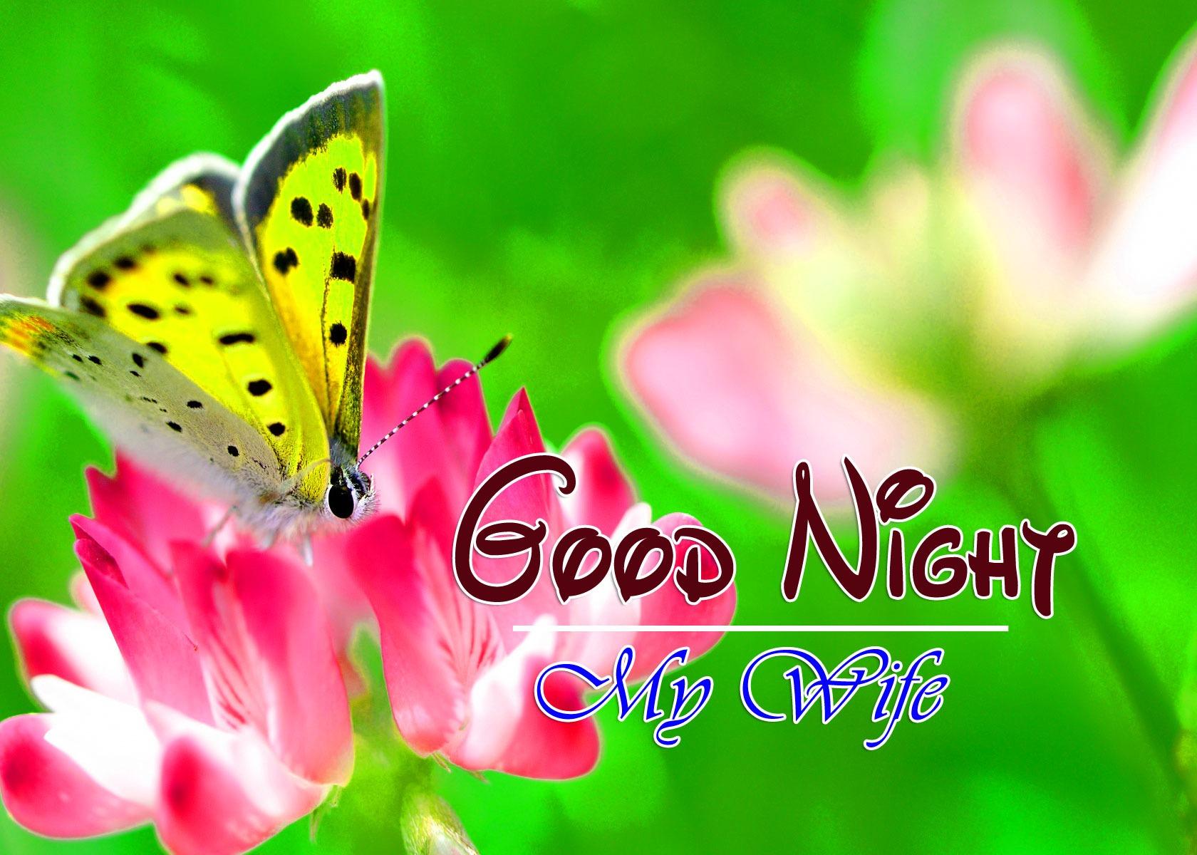 Good Night Imges Pics