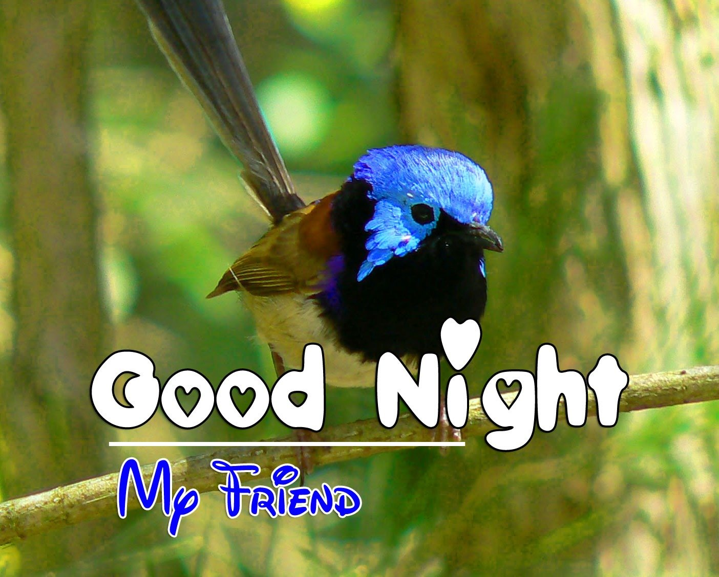 Good Night Photo For Facebook