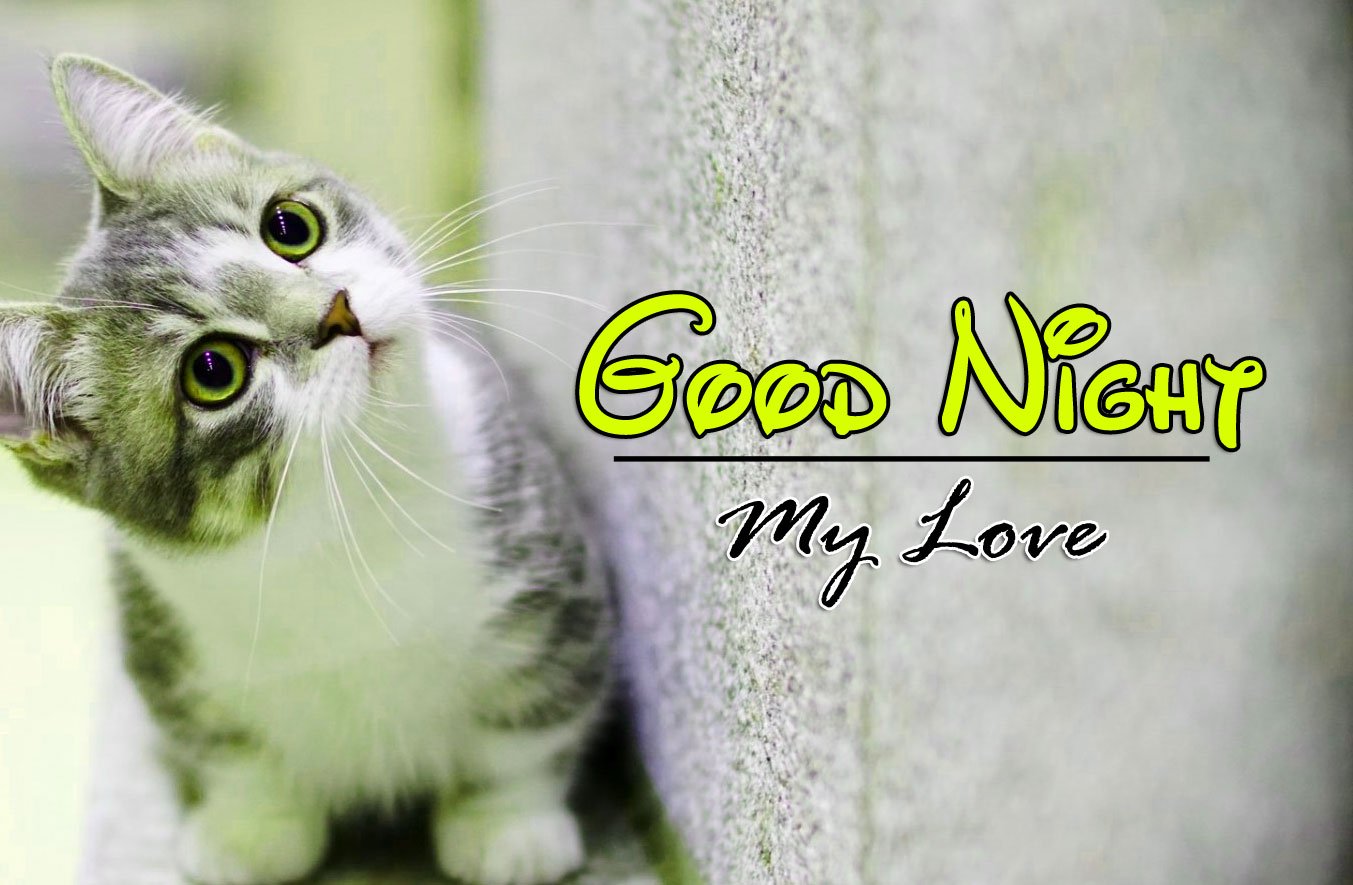 Good Night Photo For Whatsapp