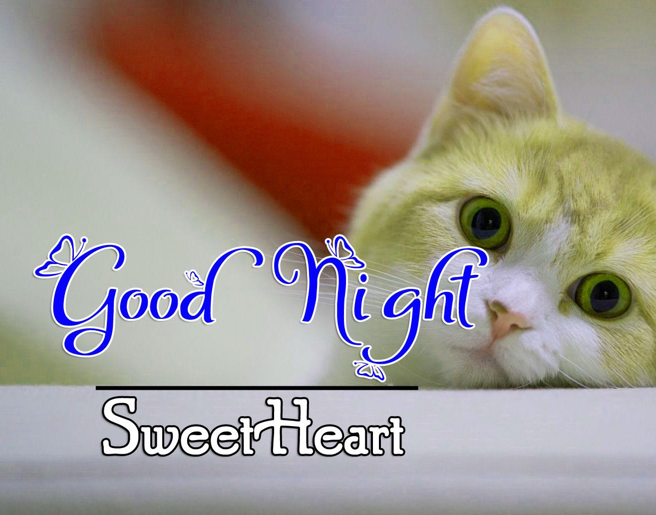 Good Night Photo Pics