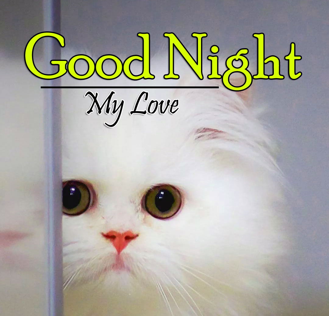 Good Night Photo Pictures