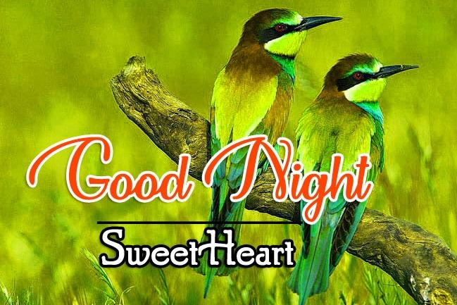 Good Night Photo Wallapper