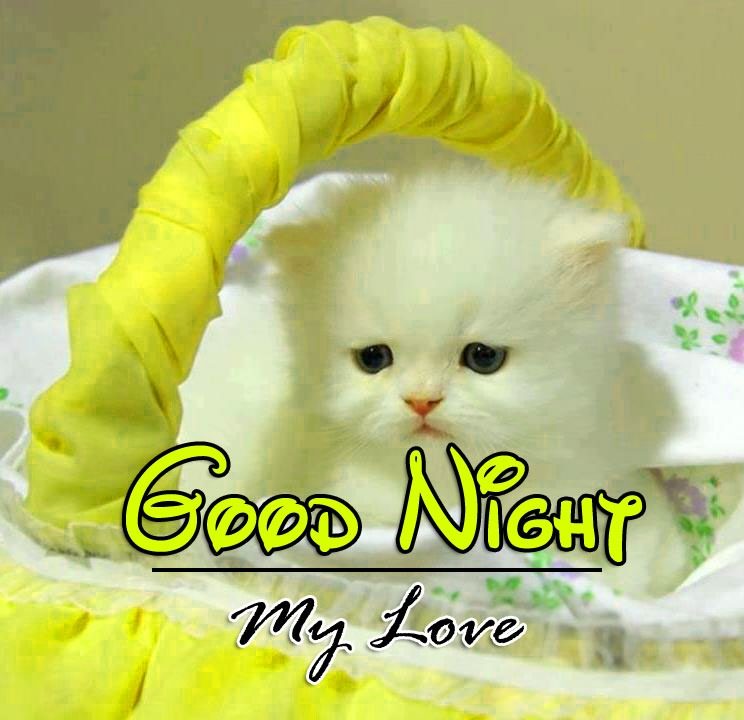 Good Night Pics Free