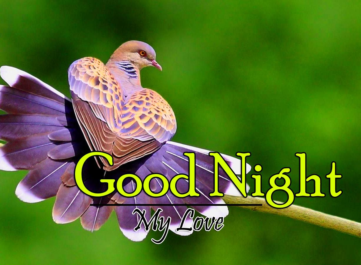 Good Night Pics Hd Free