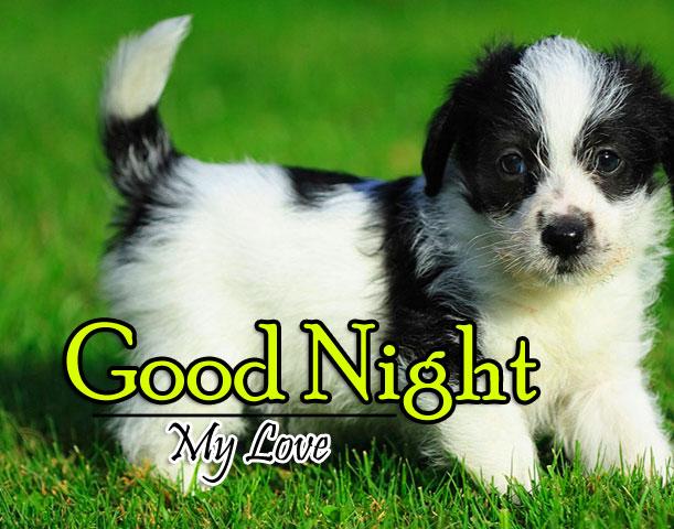 Good Night Pics Images