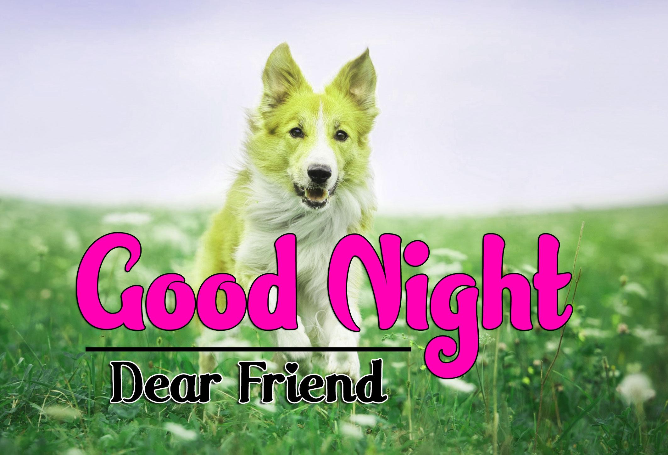 Good Night Pics Wallapper