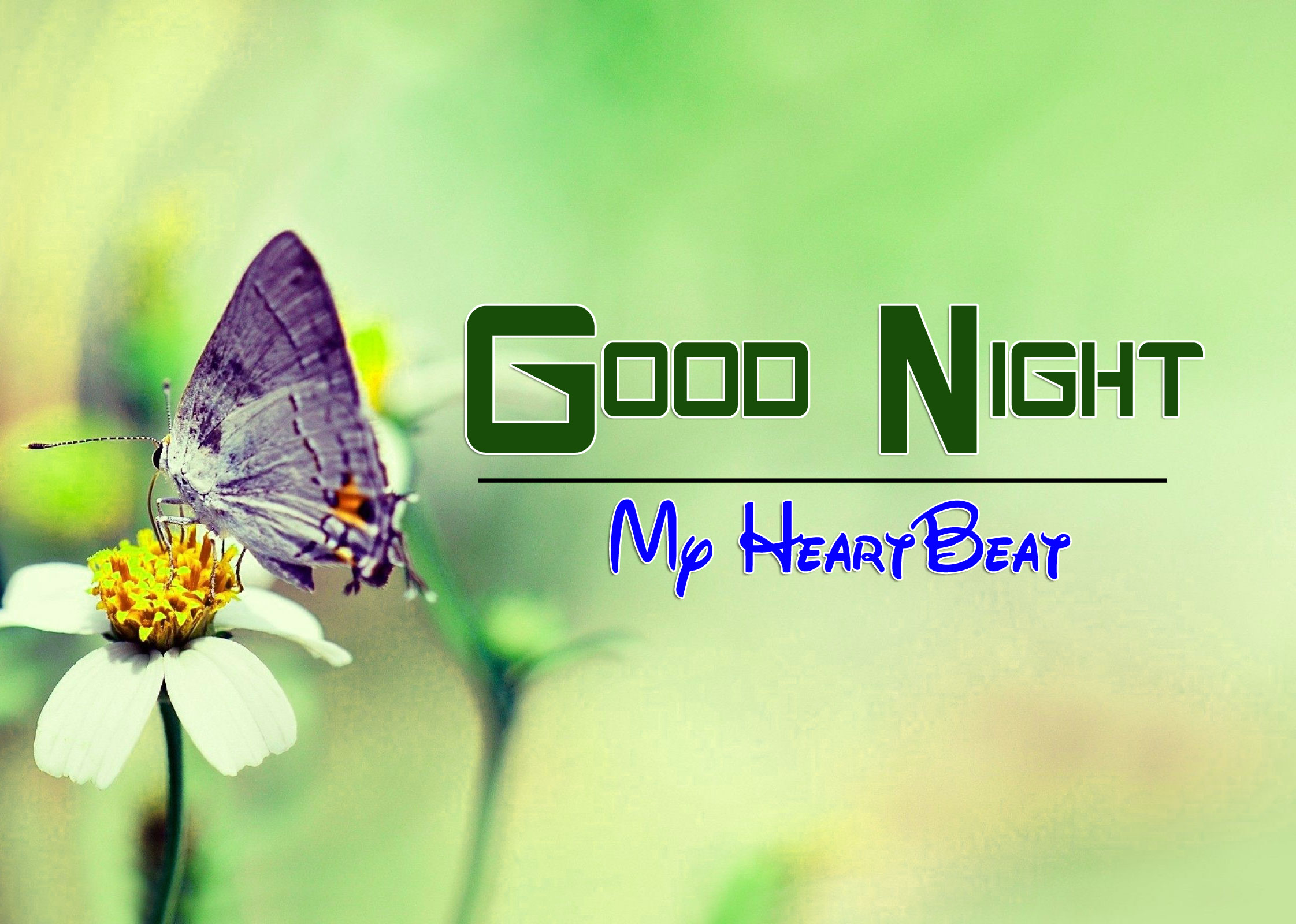 Good Night Pictures For Facebook